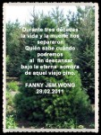 FANNY JEM WONG PORTADAS Y POEMAS (189)