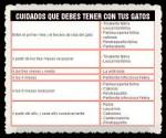 FRASES  PENSAMIENTOS CITAS 0000 (24)