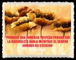 FRASES Y PENSAMIENTOS- (12)