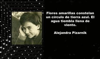 MENSAJES ALEJANDRA PIZARNIC (18)