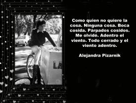MENSAJES ALEJANDRA PIZARNIC (9)