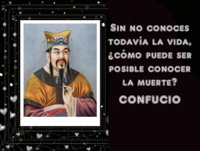 dssl-confucio
