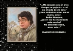 mahmoud_darwish_副本