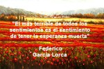 poppies red- poemas frases y pensamientos (102)