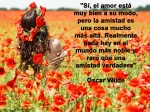 poppies red- poemas frases y pensamientos (103)