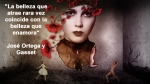 poppies red- poemas frases y pensamientos (104)