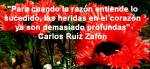 poppies red- poemas frases y pensamientos (109)