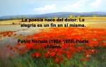 poppies red- poemas frases y pensamientos (113)