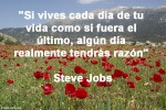 poppies red- poemas frases y pensamientos (115)