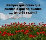 poppies red- poemas frases y pensamientos (14)