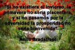 poppies red- poemas frases y pensamientos (15)