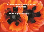 poppies red- poemas frases y pensamientos (18)