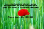 poppies red- poemas frases y pensamientos (19)