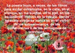 poppies red- poemas frases y pensamientos (20)