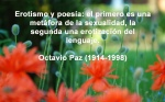 poppies red- poemas frases y pensamientos (3)