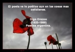 poppies red- poemas frases y pensamientos (37)