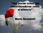 poppies red- poemas frases y pensamientos (42)