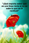 poppies red- poemas frases y pensamientos (44)
