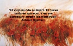 poppies red- poemas frases y pensamientos (50)