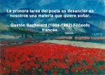 poppies red- poemas frases y pensamientos (61)