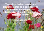 poppies red- poemas frases y pensamientos (63)