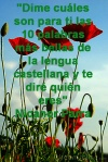 poppies red- poemas frases y pensamientos (65)