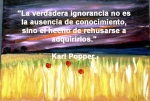 poppies red- poemas frases y pensamientos (66)