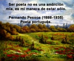 poppies red- poemas frases y pensamientos (68)