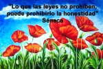 poppies red- poemas frases y pensamientos (71)