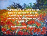 poppies red- poemas frases y pensamientos (72)