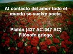 poppies red- poemas frases y pensamientos (73)
