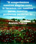poppies red- poemas frases y pensamientos (74)
