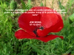 poppies red- poemas frases y pensamientos (86)