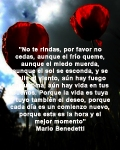 poppies red- poemas frases y pensamientos (87)