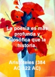 poppies red- poemas frases y pensamientos (9)
