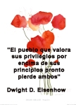 poppies red- poemas frases y pensamientos (92)