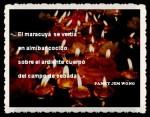 FANNY JEM WONG FRAGMENTOS DE POEMAS (11)