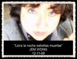 FANNY JEM WONG PORTADAS Y POEMAS (21)