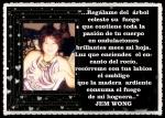 FANNY JEM WONG PORTADAS Y POEMAS (67)