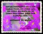 ANTHONY DE MELLO 55555