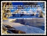 ANTHONY DE MELLO 655