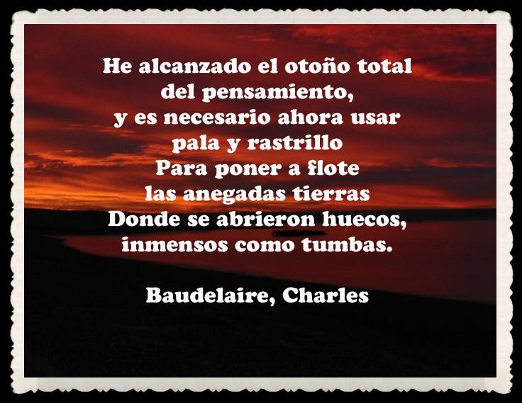 Resultado de imagem para Charles Baudelaire frases en espanol