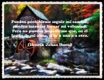 CITAS FRASES PENSAMIENTOS 222 (10)