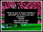 CITAS  FRASES PENSAMIENTOS 222 (3)