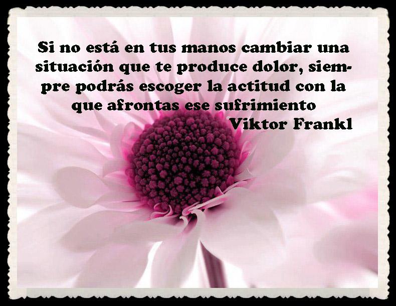 Viktor Frankl Frases Y Pensamientos De