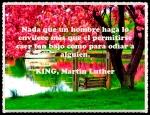 PENSAMIENTOS CITAS Y FRASES 555 (1)