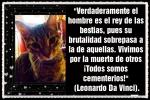 AN GAN EL GUARDIÁN DEL TEMPLO -JEM WONG (26)