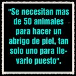 defensa a los animales (2)