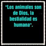defensa a los animales (88882)