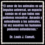 Dr  Louis J Camuti